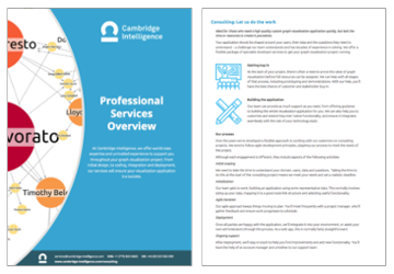 professional services white paper