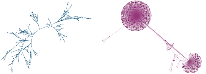 Nodes and links are spread in distinctive fan-like shaped, highlighting graph structures