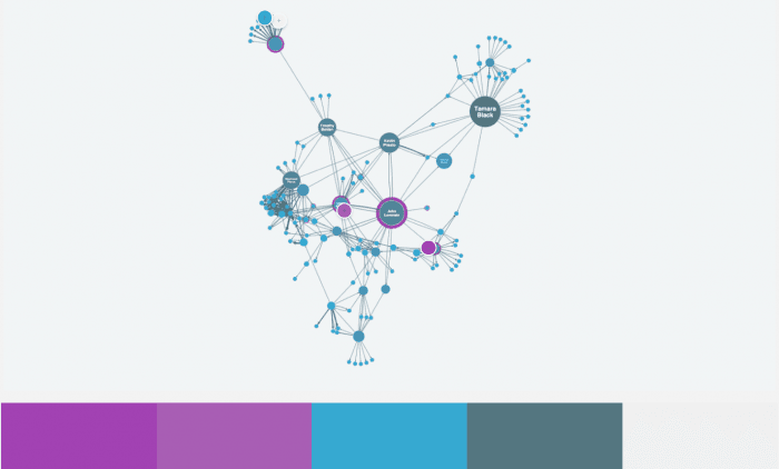A color palette of the social network visualization created using Adobe Color.