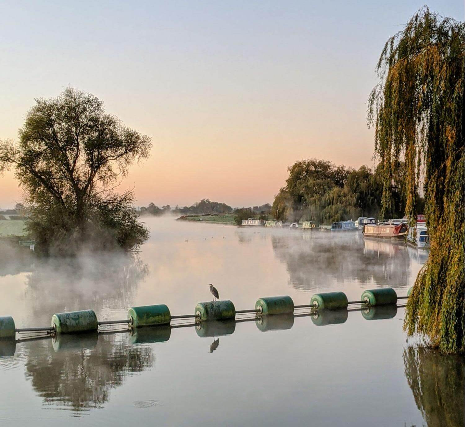The River Cam at sunrise